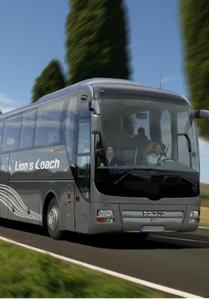 Transfers and trips with comfortable coaches for groups